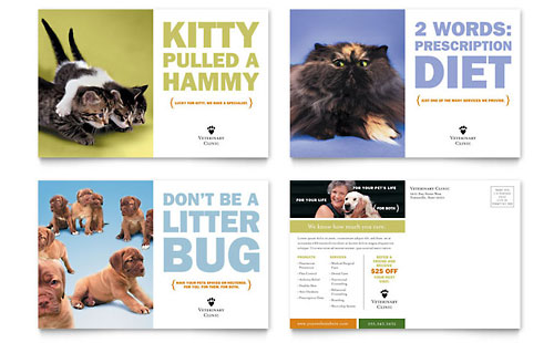 Veterinarian Clinic Postcard Template