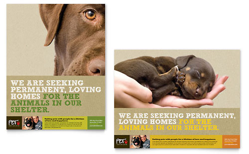 Animal Shelter & Pet Adoption Poster Template