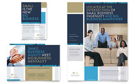 Small Business Consulting - Flyer & Ad